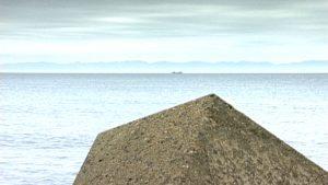 「海」がただ「海」であること。小説家 藤沢周の原風景