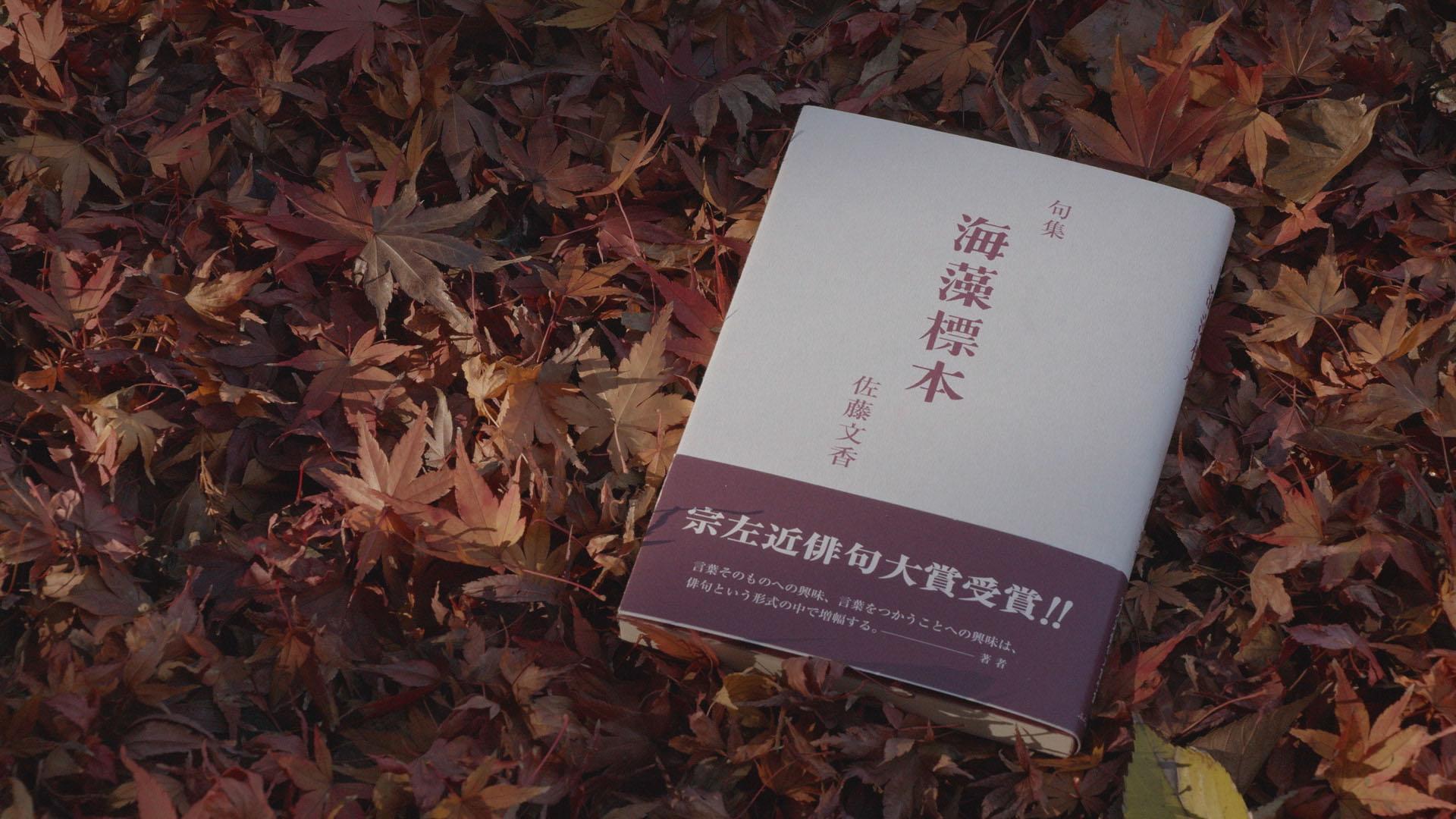 海は来る−俳句作家・佐藤文香の世界−